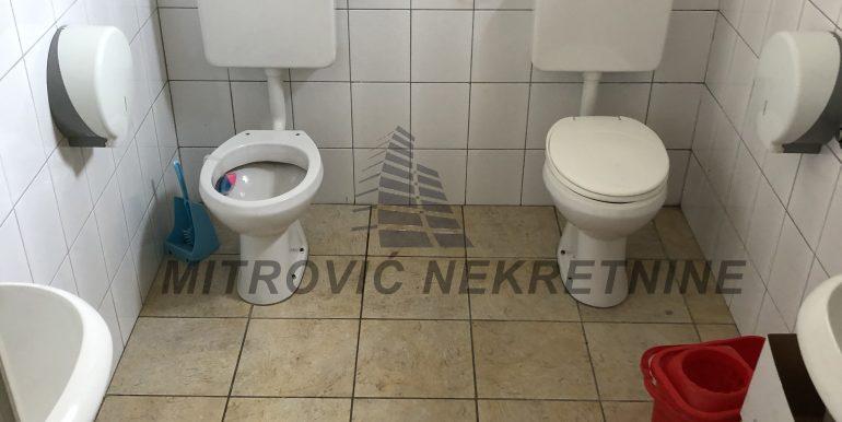 Lokal Novi Banovci